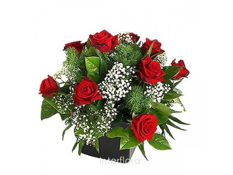 Kırmızı Güller ve Yeşillikler
