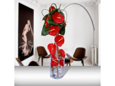 Zarif Cam Vazoda Kırmızı Antoryumlar